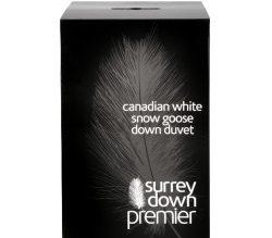canadian-white-snow-goose-d